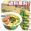 ケース販売 マルタイ 高菜ラーメン(とんこつ味) 98g×12個入