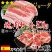送料無料 イベリコ豚 焼肉セット 最高ランク ベジョータ 肩ロース 豚バラ 500g  焼肉 バーベキュー BBQ キャンプ セール