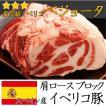 送料無料 イベリコ豚 肩ロース 最高級ランク ベジョータ 約800g〜1.3kg ブロック肉 バーベキュー セット 肉 BBQ
