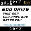 エコ ドライブ ECO DRIVE ステッカー Gタイプ 通常色 全17色 車 燃費 安全 運転 シール デカール
