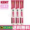 KENT 歯ブラシ 超コンパクト[白馬毛やわらかめ] ◆3本 [KNT-0132]【DM便送料無料】