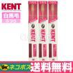 KENT 歯ブラシ 超コンパクト[白馬毛ふつう] ◆3本[KNT-0232]【DM便送料無料】
