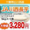 【十勝帯広川西産】長芋 5kg・1箱