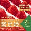 いちごの国ギフト[2Lサイズ(36粒)]濃味トロリ完熟いちご『皆足姫(みなたるひめ)』
