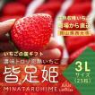 いちごの国ギフト[3Lサイズ(25粒)]濃味トロリ完熟いちご『皆足姫(みなたるひめ)』