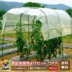 雨よけセット ワイドタイプ 間口190cm 家庭菜園用