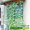 【送料無料】daim 緑のカーテン 伸縮アーチ型 180cm幅...