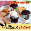 モモばあちゃんのカップケーキ 2箱/2種類
