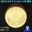 おしゃれ 3D デザイン電球 (ネジ波模様つき,直径 4.8 cm 100 V 2 W 電球色 E26 LED 照明,白熱灯 20 W 相当)