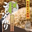 特別栽培米 宮城県産コシヒカリ 一等米玄米 30kg 平成29年産