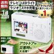 YAZAWA ワンセグエコTV TV02WH テレビ ワンセグ 2.7イ...
