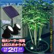LED スポットライト 屋外 ソーラーライト ガーデンライト 充電式 ホワイト2灯