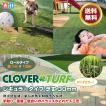 人工芝 30mm リアル ロール 庭 Clover Turf クローバーターフ レギュラー 1m × 10m GA-P318