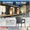 チェア 椅子 ガーデンファニチャー グレー ホワイト 庭 テラス SCAB スキャブオリンピア アーム 全2色 タカショー TK-1204