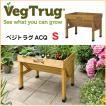 【VegTrug  ベジトラグ】木製 ACQ 家庭菜園 花壇 野菜栽培 草花 (S)TK-P1248