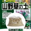 鉢・プランターで育てる 山野草の土 【小分け】 1L  pH調整済み