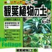 鉢・プランターで育てる 観葉植物の土 6L 元肥入り、pH調整済み
