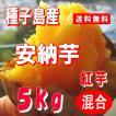 安納芋 紅 5kg サツマイモ 種子島産 Mサイズ/蜜芋 24〜38個