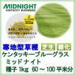 種子ケンタッキーブルーグラス ミッドナイトコート1kg 60〜100平米分