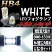LEDフォグランプ HB4 80W ホワイト/白色 最新型 バルブ