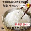 コシヒカリ 無洗米 新米30年産 エコ栽培 特A一等米(食味値80) 5K×2 世界農業遺産 能登里山の米