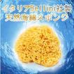 あすつく  ベリーニ社 天然海綿ハニコム種(16cm) 天然海綿スポンジ 地中海 最高級 ボディスポンジ 赤ちゃん 敏感肌  ベビー
