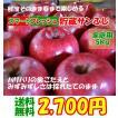 送料無料 山形県産りんご サンふじ 家庭用5kg スマートフレッシュ貯蔵りんご