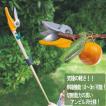 高枝切りバサミ 剪定鋏 園芸用品  高枝鋏 ポールスリム2段式 アンビル刃 NO321 ガーデニング雑貨 園芸工具