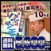 岐阜県産はつしも【平成28年産 ハツシモ】 10キロ おいしいお米