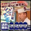 岐阜県産はつしも ハツシモ 5キロ おいしいお米