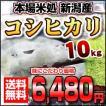 新潟県産こしひかり 【平成28年産 コシヒカリ】 10キロ おいしいお米