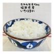 お米 バーゲン 5kg いちほまれ  福井県産 満天青空レストラン 30年産