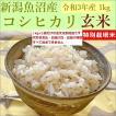 玄米 新米 1kg 魚沼産コシヒカリ 新潟県産 令和3年産