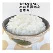 米 5kg 雪若丸(ゆきわかまる) お米 山形県産 30年産