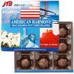 アメリカ お土産 アメリカンハーモニー マカダミアナッツチョコ9粒入1箱 チョコレート