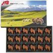ニュージーランド お土産 donovans(ドノヴァンズ) ニュージーランド シープチョコ1箱 チョコレート