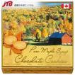 カナダ お土産Rene Rey(レネレイ) レネレイ チョコクッキーカナダ