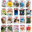 小学館の図鑑NEO/1〜20巻セット