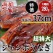 うなぎ蒲焼 徳用ジャンボ (超特大・有頭・タレ付)約250g│ウナギ 鰻