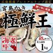 広島産 宮島かき「極鮮王」特大2Lサイズ(1kg)│かき カキ 牡蠣