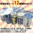 日本酒 飲み比べセット 新潟・日本酒カップ酒180ml×12本 父の日(あすつく対応)