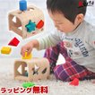 [ボイラの木のおもちゃ] シェイプソーター / 型はめパズル 1歳 2歳 誕生日 出産祝い 男の子 女の子 VOILA
