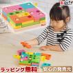 知育玩具 木のおもちゃ 赤ちゃん 3歳 4歳 誕生日プレゼント 男 女 ランキング パズル 脳トレ 高齢者 知育 玩具 誕生日 お祝い 木製 おもちゃ