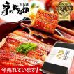 国産うなぎ通販 海産物 お祝い 鰻カット蒲焼3枚 Bset