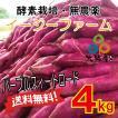 数量限定!自社農場直送 さつまいも 紫芋 パープルスイートロード 農薬無散布 4kg 送料無料!