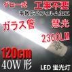 LED蛍光灯 40W形 直管120cm ガラスタイプ グロー式工事不要 40型 LEDベースライト 色選択 LED 蛍光灯 TUBE-120PB-X