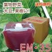 EM3S 〈10L〉 イーエムスリーエス 光合成細菌 バチルス菌 EM菌 光合成アップ 送料無料