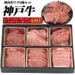 A5 ランク 神戸牛 ウデ ( カタ肉 ) 焼肉 セット お取り寄せ グルメ ランキング