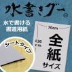 全紙サイズ 【水書きグー】シートタイプ(1000回使用も大丈夫)