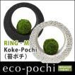Koke-Pochi(苔ポチ) リングタイプ Mサイズ eco-pochi(エコポチ)
